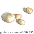 감자, 야채, 채소 46004395