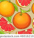 grapefruit fruits vector pattern 46016210