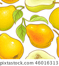 pear vector pattern 46016313
