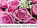 ดอกกุหลาบ,ดอกไม้,ช่อดอกไม้ 46019938