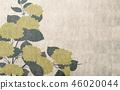 Japanese style background hydrangea 46020044