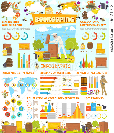 Infographic of beekeeping, statistics with charts 46021918