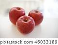 사과, 사과나무, 애플 46033189