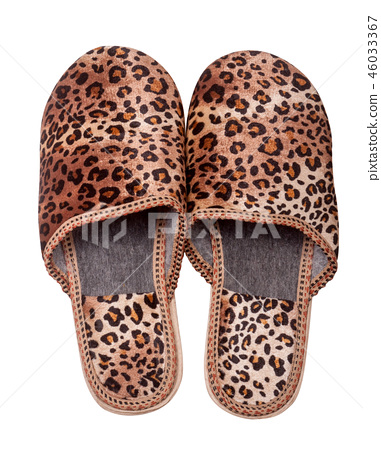 female domestic leopard slippers isolated on white background 46033367