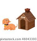 Dog and pet dog house 46043393