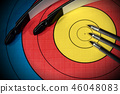 Target with Bow and Arrows - Archery Sport 46048083