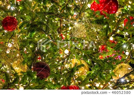 크리스마스 트리 겨울 이미지 46052380
