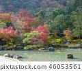 Landscape view of Tenryu-ji Temple garden 46053561