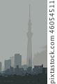 Tokyo Sky Tree Silhouette 46054511