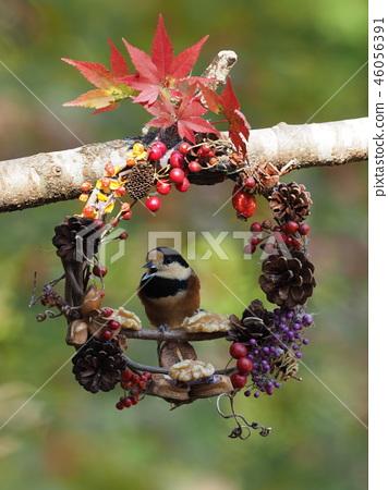 Small bird wreath Handmade tree wreath wreath Tree wreath wreath 46056391