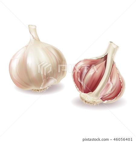 3d realistic garlic set, spicy condiment 46056401