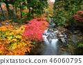 Autumn Garden Valley 46060795