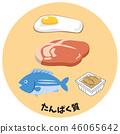 五種主要營養素。蛋白質圖像的插圖 46065642