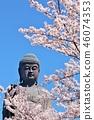 จังหวัดอิบะระกิ Ushiku Daibutsu และซากุระ 46074353