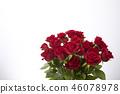 花朵 花卉 花 46078978