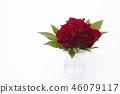 花朵 花卉 花 46079117