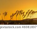 ธรรมชาติ,ทัศนียภาพ,ภูมิทัศน์ 46081897