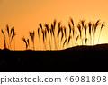 ธรรมชาติ,ทัศนียภาพ,ภูมิทัศน์ 46081898