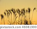 ธรรมชาติ,ทัศนียภาพ,ภูมิทัศน์ 46081900