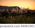 ทัศนียภาพ,ภูมิทัศน์,ธรรมชาติ 46081901