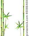 bamboo background frame 46086460