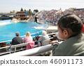 범고래의 쇼를 보는 여자 46091173
