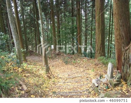 Around Yokomineji temple gate 46099751