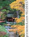 Miyajima, the autumn leaves of Momijidani 46106937