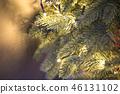 聖誕樹裝飾 46131102