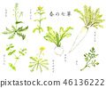 Seven herbs of spring 46136222
