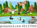 鳥兒 鳥 池塘 46137066