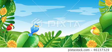 Birds in nature landscape 46137329