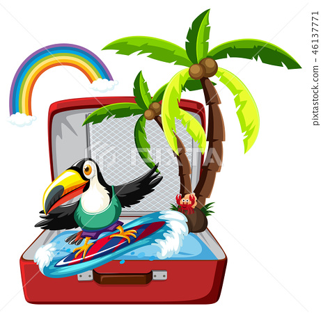Toucan surfing in suitcase 46137771