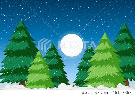 Snow forest background scene 46137868
