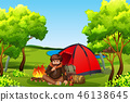 forest, camp, camping 46138645