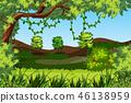 nature, natural, plant 46138959