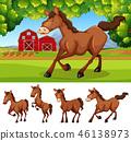 farmland, farm, land 46138973