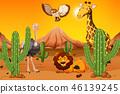 owl, ostrich, cactus 46139245