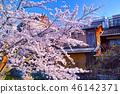 京都 祇園 祇園白川 46142371