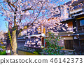 京都 祇園 祇園白川 46142373