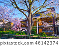 京都 祇園 祇園白川 46142374