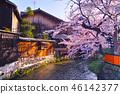 京都 祇園 祇園白川 46142377