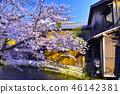 京都 祇園 祇園白川 46142381