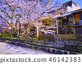 京都 祇園 祇園白川 46142383