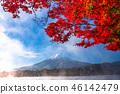 """""""山梨縣""""日本的秋/富士山和秋葉 46142479"""