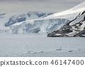 Large Glacier At Paradise Bay, Antarctic Peninsula 46147400