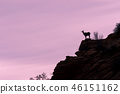 Desert Bighorn Sheep Ewe Silhouetted 46151162