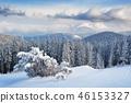 winter snow tree 46153327