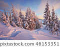winter forest mountain 46153351