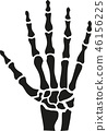 Skeleton hand with bones 46156225